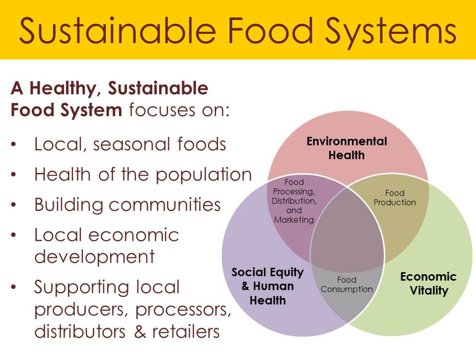 the issue of global food security in the future Special issue 'grabbing' land for solving the global food for natural resources used for local livelihoods and food security this special issue aims to better understand how these investments in global food growth potential and foreclosing future options for an inclusive.